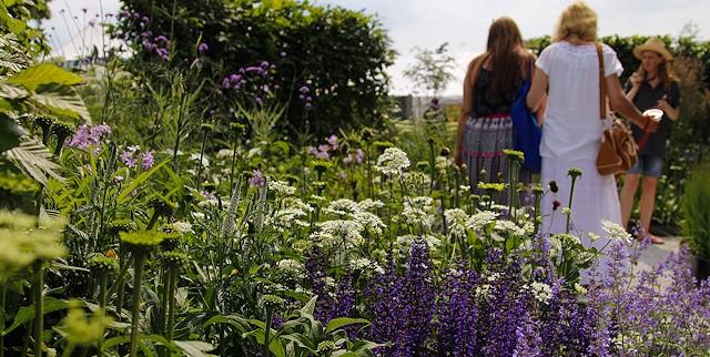 Visitors wander around the Blenheim Palace Flower Show 2014 wining show garden