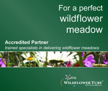 Slate Grey Design is an Accredited Partner trained specialist for delivering wildflower meadows