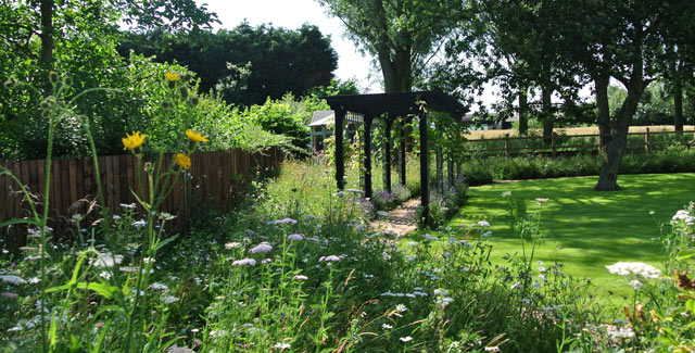 Wildflower Turf brings the countryside into the garden by edging this tranquil walkway